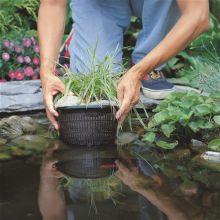 корзина для высадки водных растений 23х23см 06912323 Coraplax (Испания)