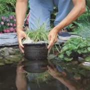 корзина для высадки водных растений 27х27см 06912828