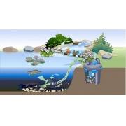 напорный фильтр для пруда pontec pondopress 15000 57147 Pontec (Германия)