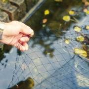 Сетка на зеркало воды Velda VT Cover Net 6 х 3 м