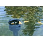 скиммер для пруда oase  aquaskim 40 56907 Oase (Германия)